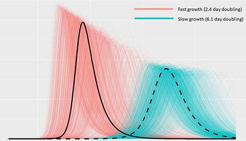 fast_slow_comparison_edited.jpg