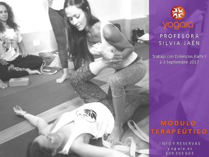 Seminario de Yoga Terapeútico I