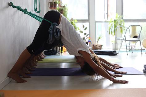 ¿Quieres aprender Yoga?
