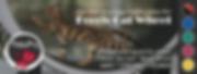 banner-facebook-01-rev3-flat.png