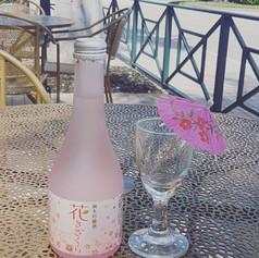 Sakura Flavored Sake