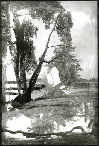 Une photo prise à l'aide d'une caméra argentique, imprimée en chambre noire  A photo taken with a film camera and developed in the dark room