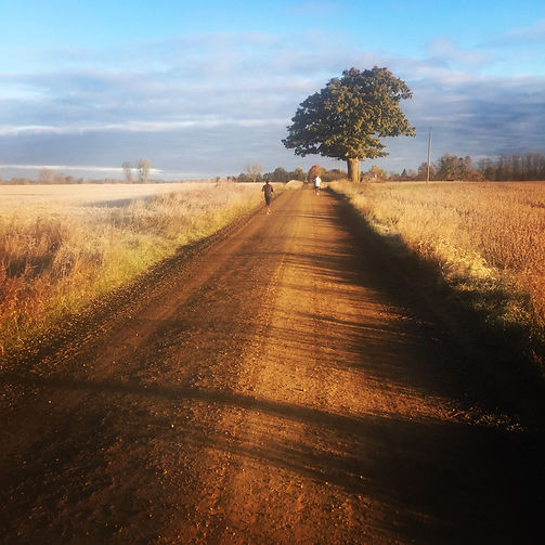 Countryside Running.jpg