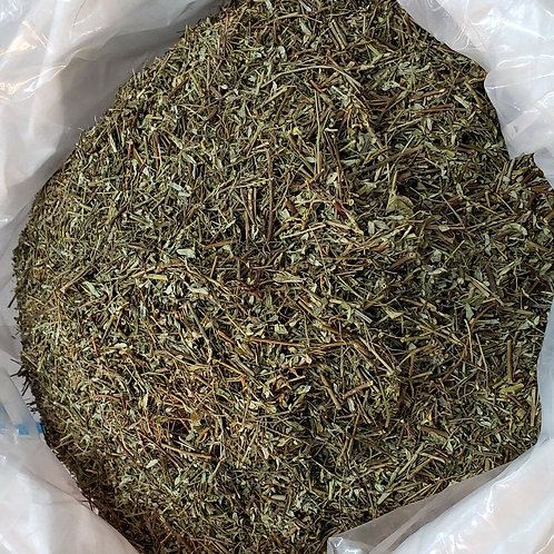 CHANCA PIEDRA STONE BREAKER TEA 1 POUND HERB TEA VALUE PACK FAST SHIPPING!