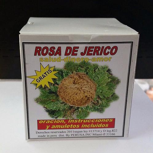 ROSA DE JERICO 1PC RITUALIZADA ORACION E INSTRUCCIONES INCLUIDAS AMULETOS GRATIS