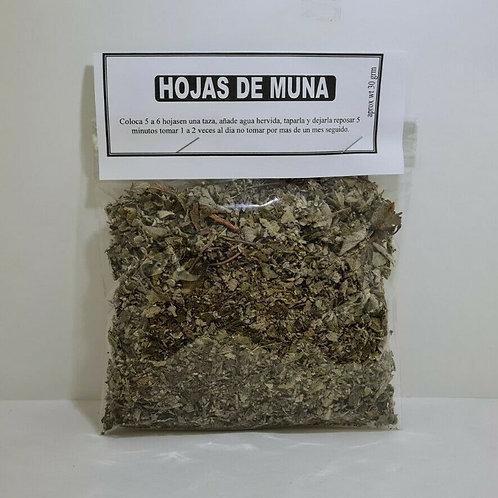 HOJAS DE MUÑA 30 GR ACIDEZ ESTOMACAL,INDIGESTIÓN, BRONCODILATADOR Y EXPECTORANTE