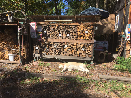 Have you visited our firewood lot?