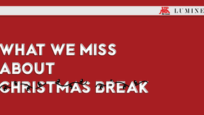 What We Miss About the Christmas Break