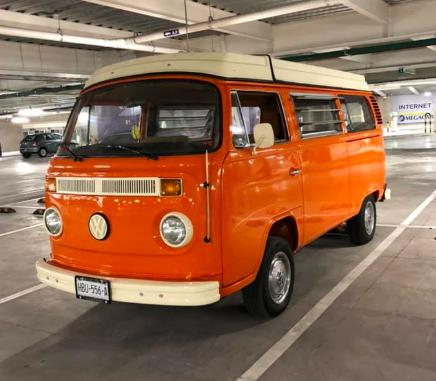 Westy orange
