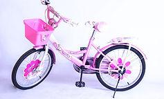 BMX 20 Flower Girl.jpg