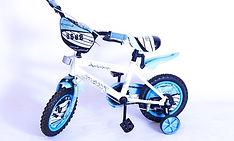 BMX 12.jpg