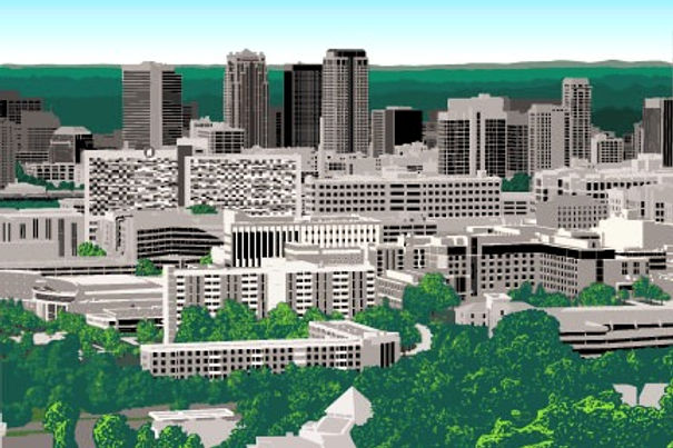 Birmingham_Graphic_Skyline_edited.jpg