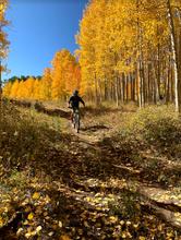 Mountain Biking Boulder Mountain