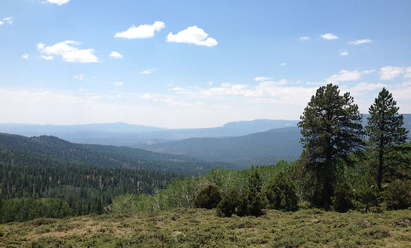 Great Western Trail Boulder Mountain Dixie National Forest Utah