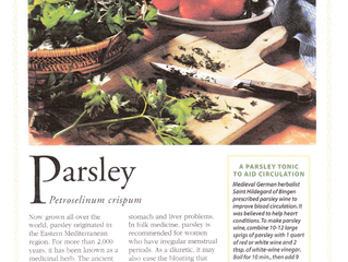 Herbs & Spices: Parsely