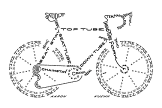 bicycle club, cycling, club rides,