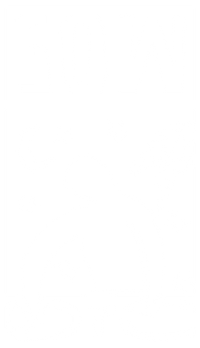 SOW_Logo_SW_Weiss.png