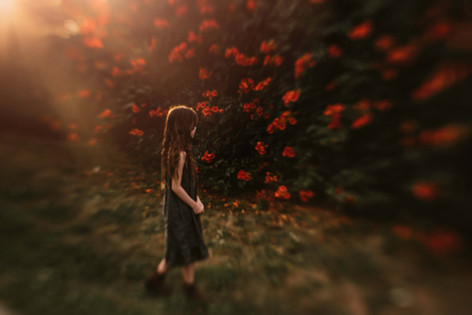 Fence-Flowers-3-WIX.jpg