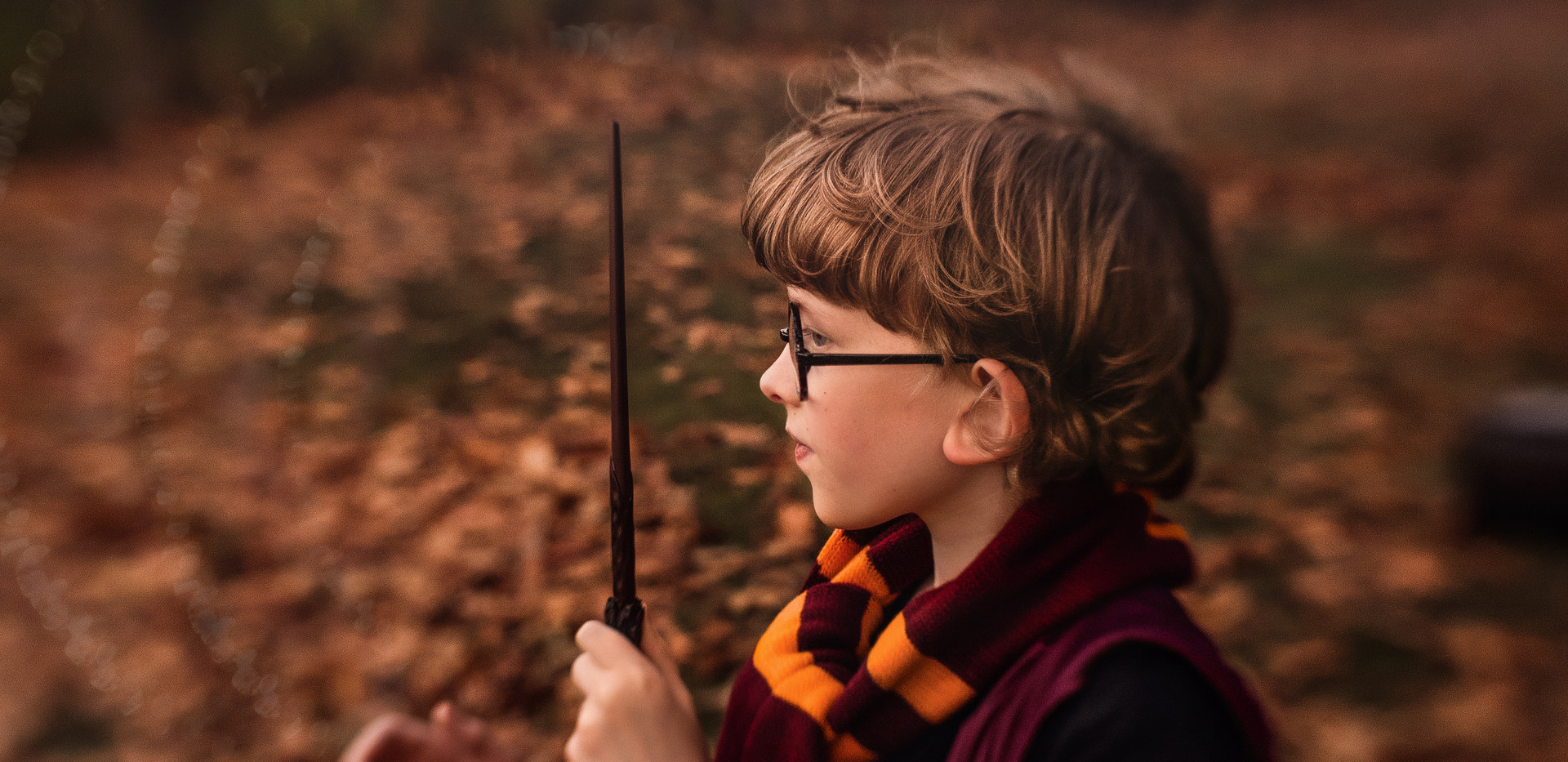 HP-Heidi-2-Final-Magic-Added-WIX.jpg