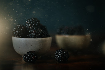 Still Life_Magical_Hollie Jeakins Photography.jpg