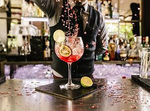 Barman Cóctel Verter