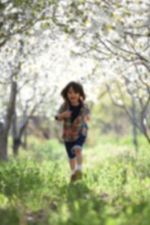 blurred-background-boy-child-1416736 (1)