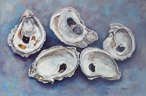 Oyster Splendor by Cindy Jenkins