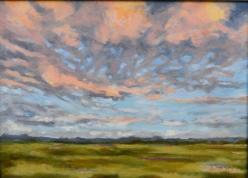 Buttermilk Skies by Cindy Jenkins