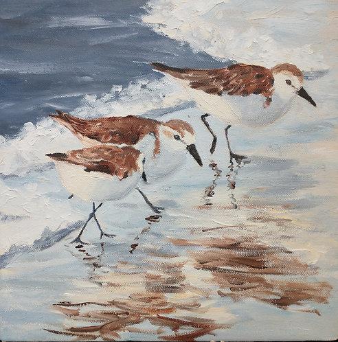 Follow the Waves by Carol Winner