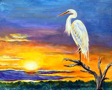 Egret Sunset by Dick Hamilton