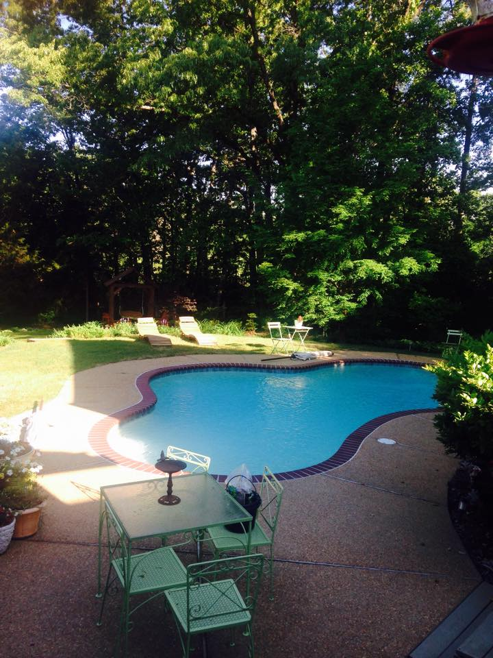 Pool with Yard