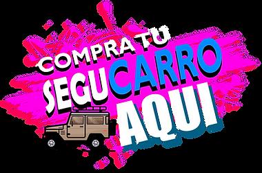 SEGU CARRO icon.png