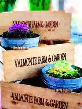 Valmonte Farm and Garden