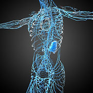 Manual Lymphatic Drainage in Copthorne Crawley Handcross Horley