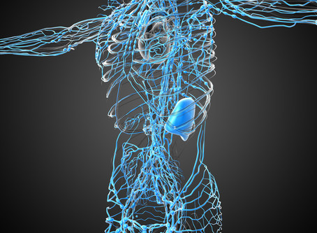 7 ways to improve your lymphatic system