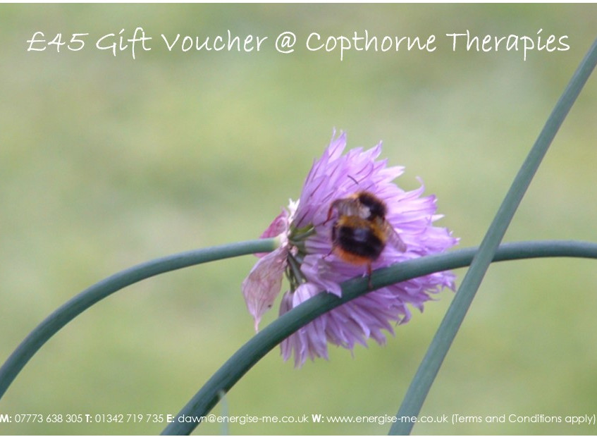 Template_-_Gift_voucher_-_chives_and_bee_£45