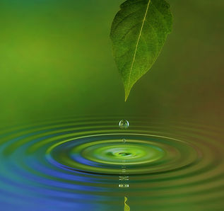 Refresh your Reiki training - all levels