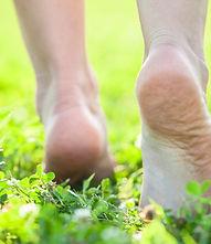 Fotolia_55145308_S - feet walking grass.