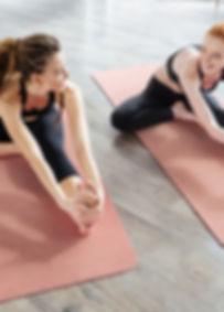 yoga monroe michigan