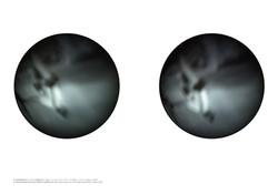 Viewing_thorough_Robert_Capa's_eyeballs_on_September_5th,_1936_naoya_yoshikawa_2010_edited