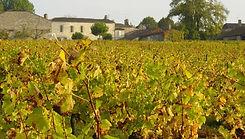 Photo_n°1_-_Château_de_Vacques.jpeg