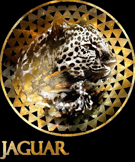 Jaguar Negro, Chamanismo, psicoterapia traspersonañ, medicina psicoelica