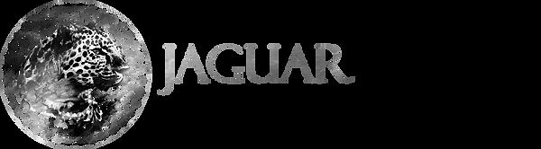Jaguar Negro Misticismo Extático