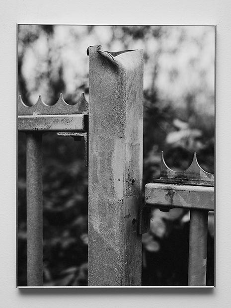 The Fence, 2019 480x640.jpg