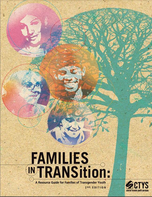 FamiliesInTransition.png