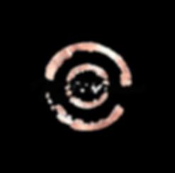 NEW Logo_Black_Option 2.png
