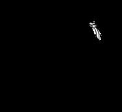 MMD_logo_final_hi-rez.png