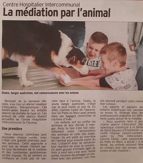 Article Courrier Cauchois 26-10-18.jpg