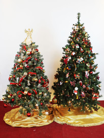 4 ft and 6 ft tree .jpg