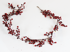 small red cranberry .png